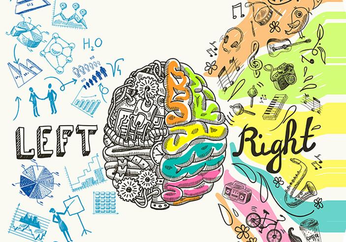 brain image - Home